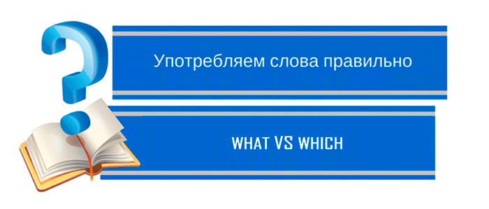 what-vs-which